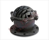 Chinese foot valve