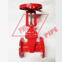 Rising Stem Gate Valve PN16